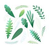 Διανυσματικό σύνολο πράσινων φύλλων απεικόνιση αποθεμάτων