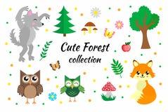 Διανυσματικό σύνολο χαριτωμένων δασικών στοιχείων Δασόβια αλεπού, λύκος, κουκουβάγιες, πεταλούδες, μανιτάρια, λουλούδια και δέντρ ελεύθερη απεικόνιση δικαιώματος