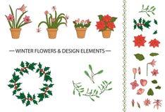 Διανυσματικό σύνολο χειμερινών λουλουδιών και στοιχείων σχεδίου στα δοχεία διανυσματική απεικόνιση
