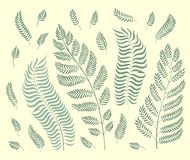 Διανυσματικό σύνολο χορταριών κήπων που απομονώνεται στο αναδρομικό πράσινο υπόβαθρο διανυσματική απεικόνιση