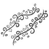 Διανυσματικό σύνολο floral εκλεκτής ποιότητας διακόσμησης με τα χέρια που σύρονται Μαύρο ΛΦ διανυσματική απεικόνιση