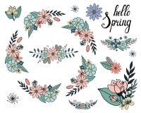 Διανυσματικό σύνολο floral κλάδου και ανθοδέσμης με τη διαφορετική μαργαρίτα διανυσματική απεικόνιση