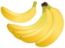 Διανυσματικό σύνολο απεικόνισης μπανανών Στοκ Φωτογραφίες