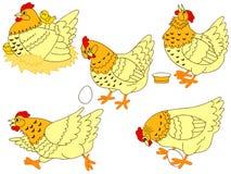 Διανυσματικό σύνολο κοτόπουλου Στοκ εικόνα με δικαίωμα ελεύθερης χρήσης