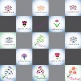 Διανυσματικό σύνολο λογότυπων λουλουδιών Στοκ Εικόνες