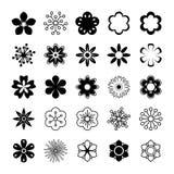 Διανυσματικό σύνολο λουλουδιών Στοκ Φωτογραφία