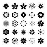 Διανυσματικό σύνολο λουλουδιών Στοκ εικόνα με δικαίωμα ελεύθερης χρήσης