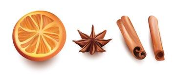 Διανυσματικό σύνολο πορτοκαλιάς φέτας, ραβδιών κανέλας και αστεριού Anice στο άσπρο υπόβαθρο Στοκ φωτογραφία με δικαίωμα ελεύθερης χρήσης