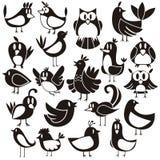 Διανυσματικό σύνολο πουλιών Στοκ Εικόνες