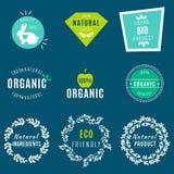 Διανυσματικό σύνολο πράσινων ετικετών και διακριτικών με τα φύλλα τα οργανικά, φυσικά, βιο και φιλικά προϊόντα eco, που απομονώνο ελεύθερη απεικόνιση δικαιώματος