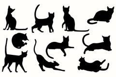 Διανυσματικό σύνολο σκιαγραφίας γατών Στοκ Εικόνες