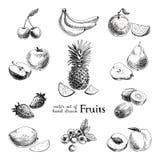 Διανυσματικό σύνολο συρμένων χέρι εκλεκτής ποιότητας φρούτων και στοκ εικόνες με δικαίωμα ελεύθερης χρήσης