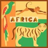 Διανυσματικό σύνολο τυποποιημένων αφρικανικών ζώων στη ζούγκλα απεικόνιση αποθεμάτων