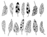 Διανυσματικό σύνολο τυποποιημένων φτερών πουλιών Συλλογή των φτερών για τη διακόσμηση Γραπτό σχέδιο με το χέρι γραμμική τέχνη Στοκ φωτογραφία με δικαίωμα ελεύθερης χρήσης