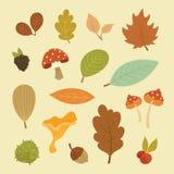 Διανυσματικό σύνολο φθινοπώρου στοιχείων στοκ εικόνες