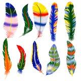 Διανυσματικό σύνολο φτερών Στοκ φωτογραφίες με δικαίωμα ελεύθερης χρήσης