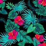 Διανυσματικό τροπικό σχέδιο με τους φοίνικες και hibiscus Στοκ Εικόνες