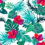 Διανυσματικό τροπικό σχέδιο με το λουλούδι φοινικών και hibiscus Στοκ Φωτογραφίες