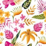 Διανυσματικό τροπικό floral άνευ ραφής σχέδιο ελεύθερη απεικόνιση δικαιώματος