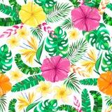 Διανυσματικό τροπικό floral άνευ ραφής σχέδιο διανυσματική απεικόνιση