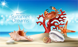 Διανυσματικό τυρκουάζ υπόβαθρο με τη θερινούς αμμώδη παραλία, τα θαλασσινά κοχύλια, τα χαλίκια, τον αστερία, το καβούρι και το κο Στοκ φωτογραφίες με δικαίωμα ελεύθερης χρήσης