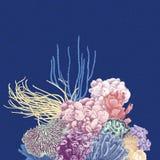 Διανυσματικό υπόβαθρο με τη ζωηρόχρωμη κοραλλιογενή ύφαλο διανυσματική απεικόνιση