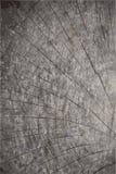 Διανυσματικό υπόβαθρο σύστασης grunge φυσική σύσταση ξύλινη Στοκ φωτογραφίες με δικαίωμα ελεύθερης χρήσης