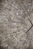 Διανυσματικό υπόβαθρο σύστασης grunge φυσική σύσταση ξύλινη Στοκ εικόνα με δικαίωμα ελεύθερης χρήσης
