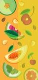 Διανυσματικό υπόβαθρο των κομματιών των φρούτων Στοκ φωτογραφία με δικαίωμα ελεύθερης χρήσης