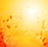 Αφηρημένο υπόβαθρο φθινοπώρου διανυσματική απεικόνιση