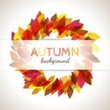 Διανυσματικό φθινοπωρινό υπόβαθρο με τα ζωηρόχρωμα φύλλα Ελεύθερη απεικόνιση δικαιώματος