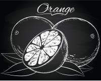 Διανυσματικό ώριμο πορτοκάλι Στοκ φωτογραφίες με δικαίωμα ελεύθερης χρήσης