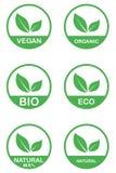 Διανυσματικό eco, οργανικά, βιο πρότυπα καρτών λογότυπων Χειρόγραφος υγιής τρώει τα εικονίδια καθορισμένα Vegan, φυσικά τρόφιμα κ διανυσματική απεικόνιση