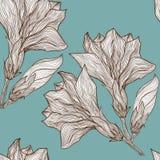 Διανυσματικό floral άνευ ραφής σχέδιο στο εκλεκτής ποιότητας ύφος Στοκ φωτογραφίες με δικαίωμα ελεύθερης χρήσης