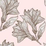 Διανυσματικό floral άνευ ραφής σχέδιο στο εκλεκτής ποιότητας ύφος Στοκ Εικόνες