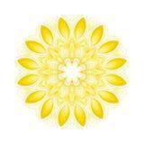 Διανυσματικό mandala Αφηρημένα διανυσματικά Floral διακοσμητικά σύνορα Δαντέλλα π Στοκ εικόνα με δικαίωμα ελεύθερης χρήσης