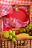 Διασκέδαση καλοκαιριού με ένα μεσημεριανό γεύμα πικ-νίκ! στοκ εικόνα