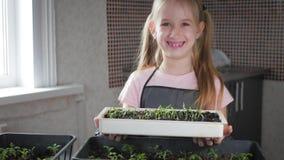 Διασκέδαση λίγη προσοχή κηπουρών για τις εγκαταστάσεις Χαριτωμένος λίγο κορίτσι παιδιών που φυτεύει τα σπορόφυτα Έννοια, φύση και φιλμ μικρού μήκους