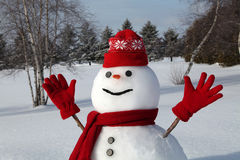 διασκεδάζοντας χιονάνθρωπος Στοκ Φωτογραφία