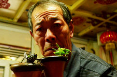 Διασκεδαστής με Grasshoppers, Πεκίνο Στοκ Φωτογραφία