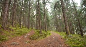 Διασπάσεις ενιαίες αλπικές πορειών σε δύο διαφορετικές κατευθύνσεις Αυτό ` s Στοκ Φωτογραφία