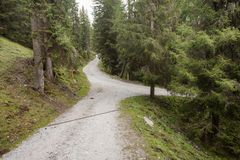 Διασπάσεις ενιαίες βουνών δρόμων σε δύο διαφορετικές κατευθύνσεις μέσα στοκ εικόνες με δικαίωμα ελεύθερης χρήσης