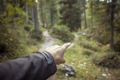 Διασπάσεις ενιαίες βουνών πορειών σε δύο διαφορετικές κατευθύνσεις Είναι μια φθινοπωρινή νεφελώδης ημέρα στοκ φωτογραφία με δικαίωμα ελεύθερης χρήσης