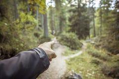 Διασπάσεις ενιαίες βουνών πορειών σε δύο διαφορετικές κατευθύνσεις Είναι μια φθινοπωρινή νεφελώδης ημέρα στοκ εικόνες με δικαίωμα ελεύθερης χρήσης