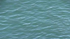 Διασχισμένα ρεύματα όπου ο κολπίσκος Tallebudgera ανοίγει πρίν ρέει στον ωκεανό στο Palm Beach, Αυστραλία φιλμ μικρού μήκους