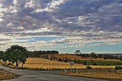 Διατομή του δρόμου Seppeltsfield στους αμπελώνες κοιλάδων Barossa στη Νότια Αυστραλία στοκ εικόνες με δικαίωμα ελεύθερης χρήσης