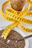 Διατροφή μέτρου σπόρων Chia Στοκ Εικόνα