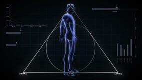 Διαφανές ανθρώπινο σώμα με τον άλφα -άλφα-cannell βρόχο 4K απεικόνιση αποθεμάτων