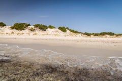 Διαφανή θάλασσα και κρύσταλλο - καθαρίστε το νερό της Σαρδηνίας Στοκ εικόνα με δικαίωμα ελεύθερης χρήσης