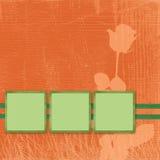 διαφημιστική φωτογραφία καρτών Διανυσματική απεικόνιση